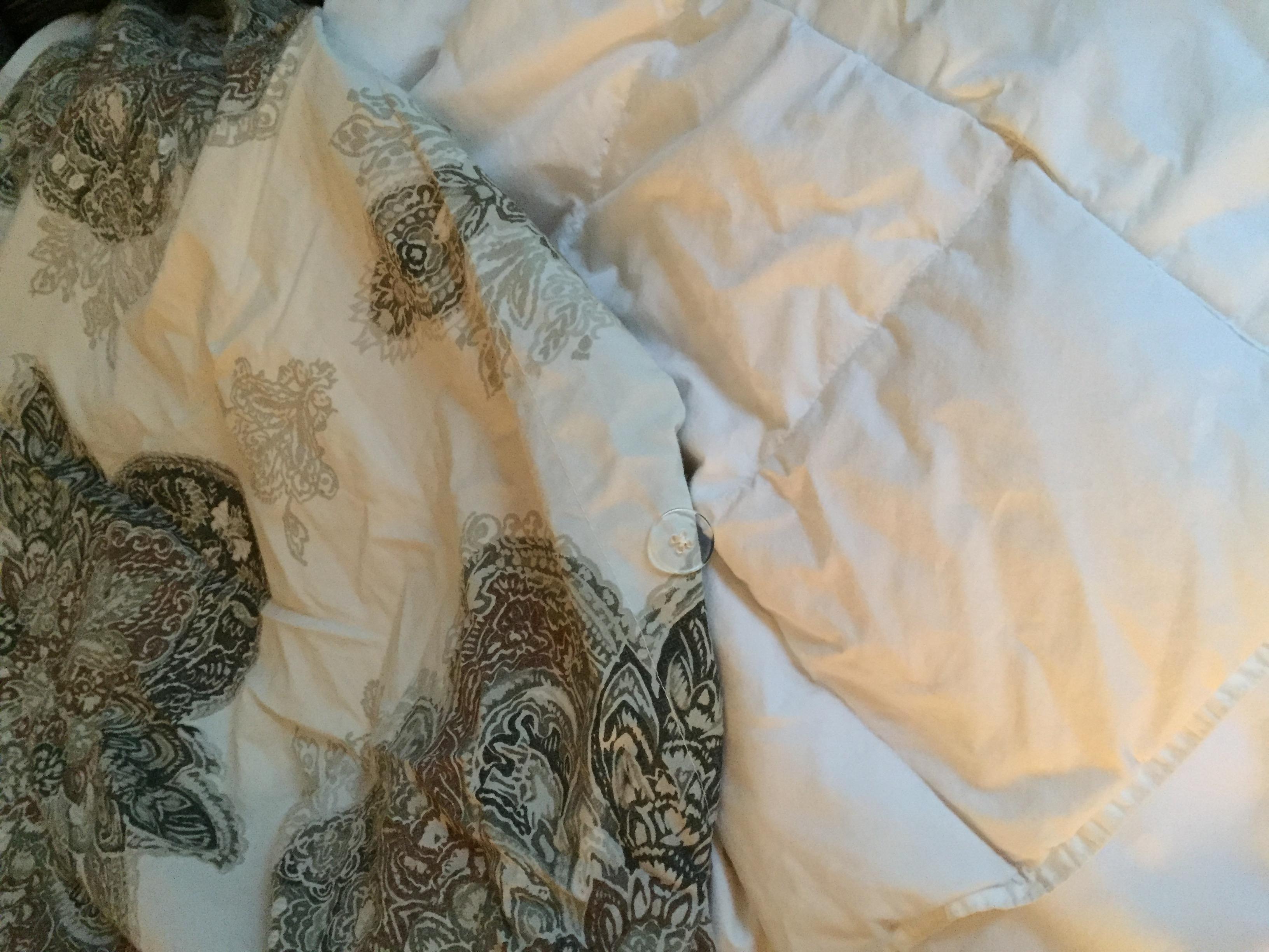 Down Comforter in a duvet.